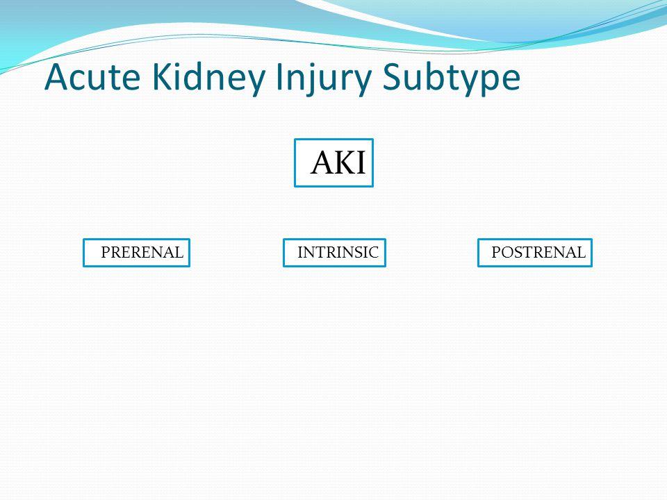 Subtype Acute Kidney Injury PRERENAL AKI INTRINSICPOSTRENAL