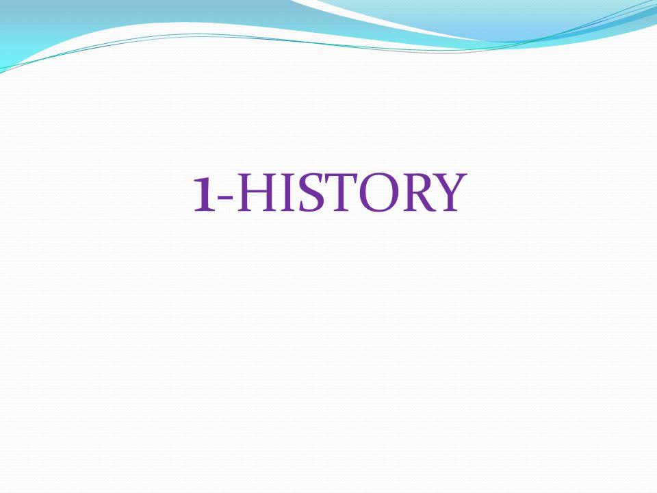 1 -HISTORY