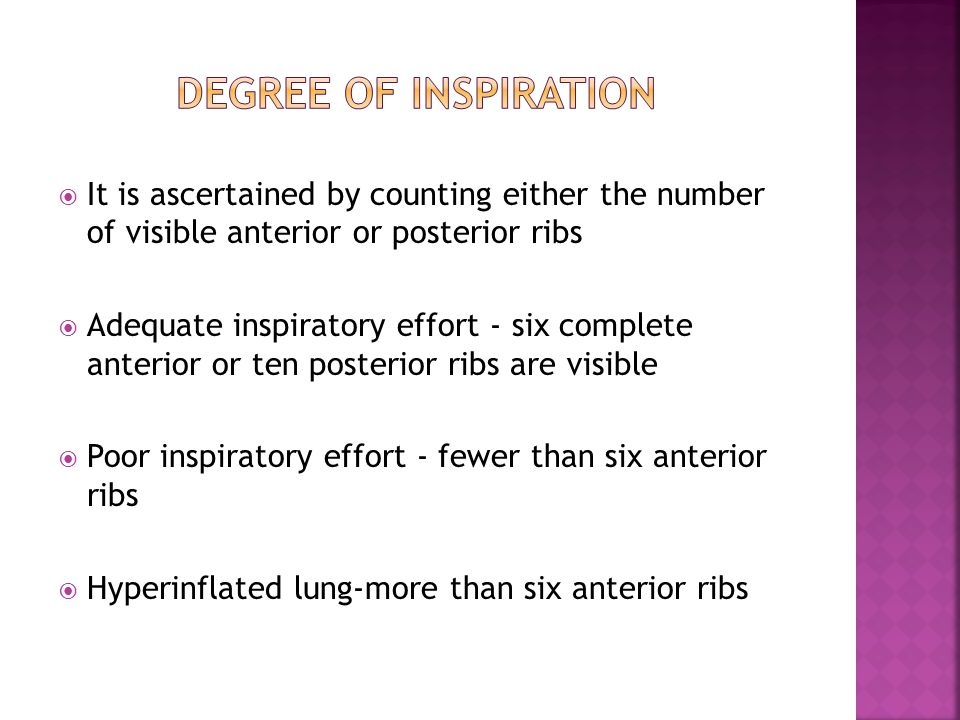  It is ascertained by counting either the number of visible anterior or posterior ribs  Adequate inspiratory effort - six complete anterior or ten p