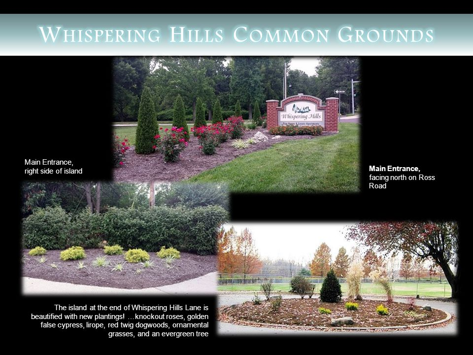 The island at the end of Whispering Hills Lane is beautified with new plantings.