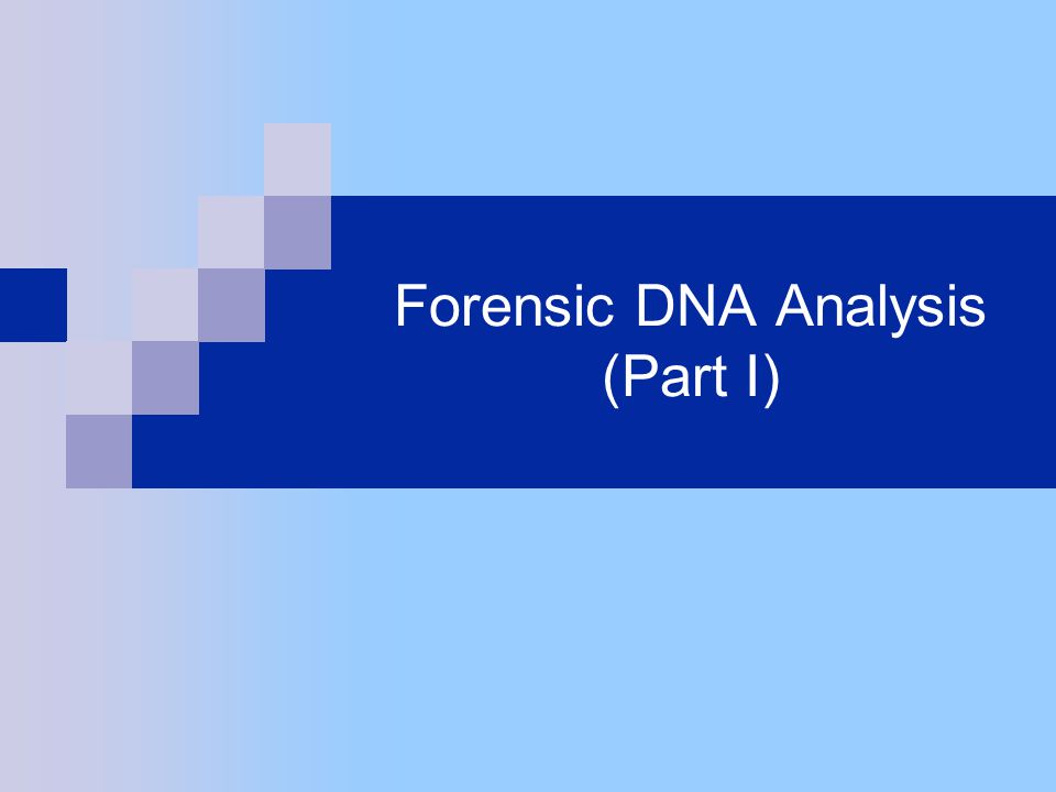 What are sources of DNA at a crime scene.