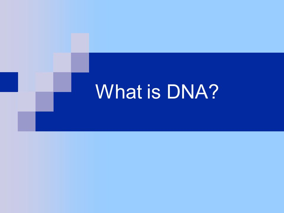 How does DNA differ among Humans?