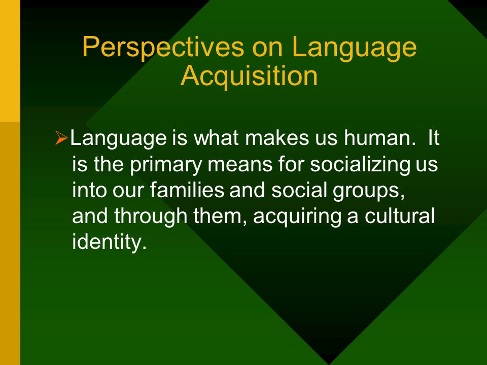 Culture, Language, and Learning Style  These three are inextricably intertwined:  Language shapes and is shaped by culture.
