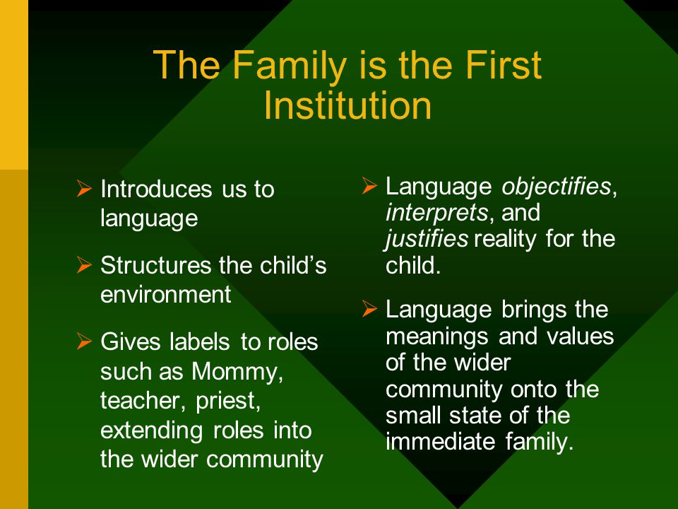 Institutional Aspects of Language in the Family  Language has several characteristics in common with other social institutions:  It is external.