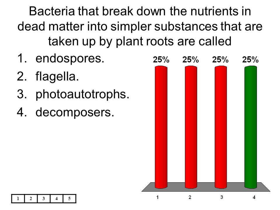 12345 Bacteria that break down the nutrients in dead matter into simpler substances that are taken up by plant roots are called 1.endospores. 2.flagel