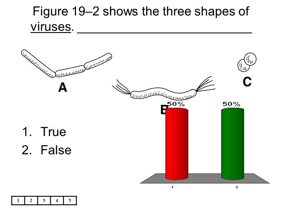 12345 Figure 19–2 shows the three shapes of viruses. _________________________ 1.True 2.False