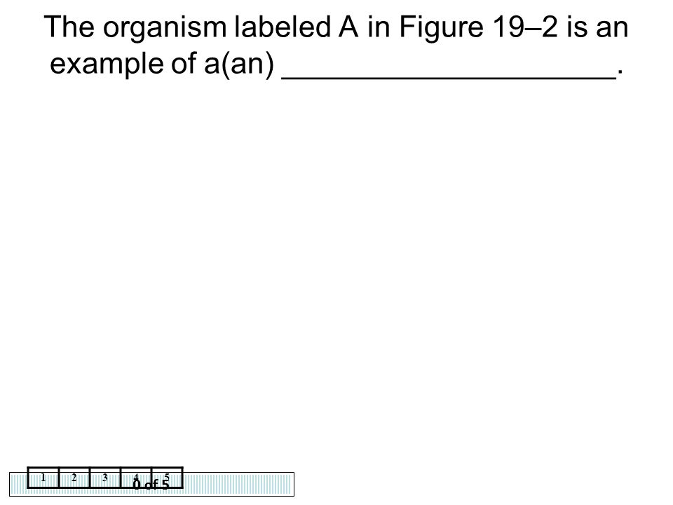 0 of 5 12345 The organism labeled A in Figure 19–2 is an example of a(an) ____________________.