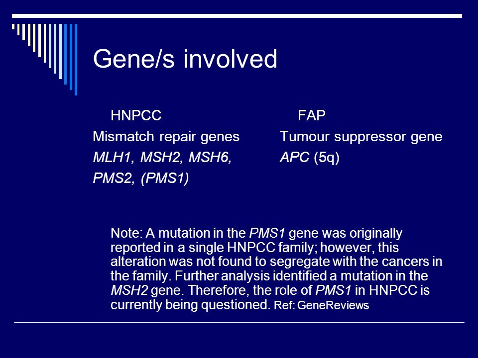 Mismatch repair genes (MMR) e.g.