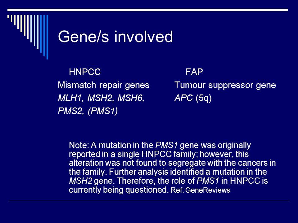Gene/s involved HNPCC Mismatch repair genes MLH1, MSH2, MSH6, PMS2, (PMS1) FAP Tumour suppressor gene APC (5q) Note: A mutation in the PMS1 gene was o