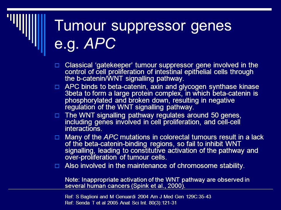 Tumour suppressor genes e.g. APC  Classical 'gatekeeper' tumour suppressor gene involved in the control of cell proliferation of intestinal epithelia