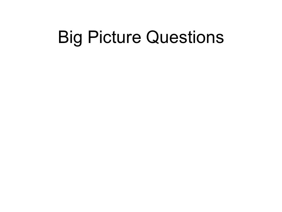 Big Picture Questions