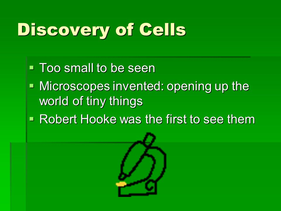 Discovery of Cells  Too small to be seen  Microscopes invented: opening up the world of tiny things  Robert Hooke was the first to see them