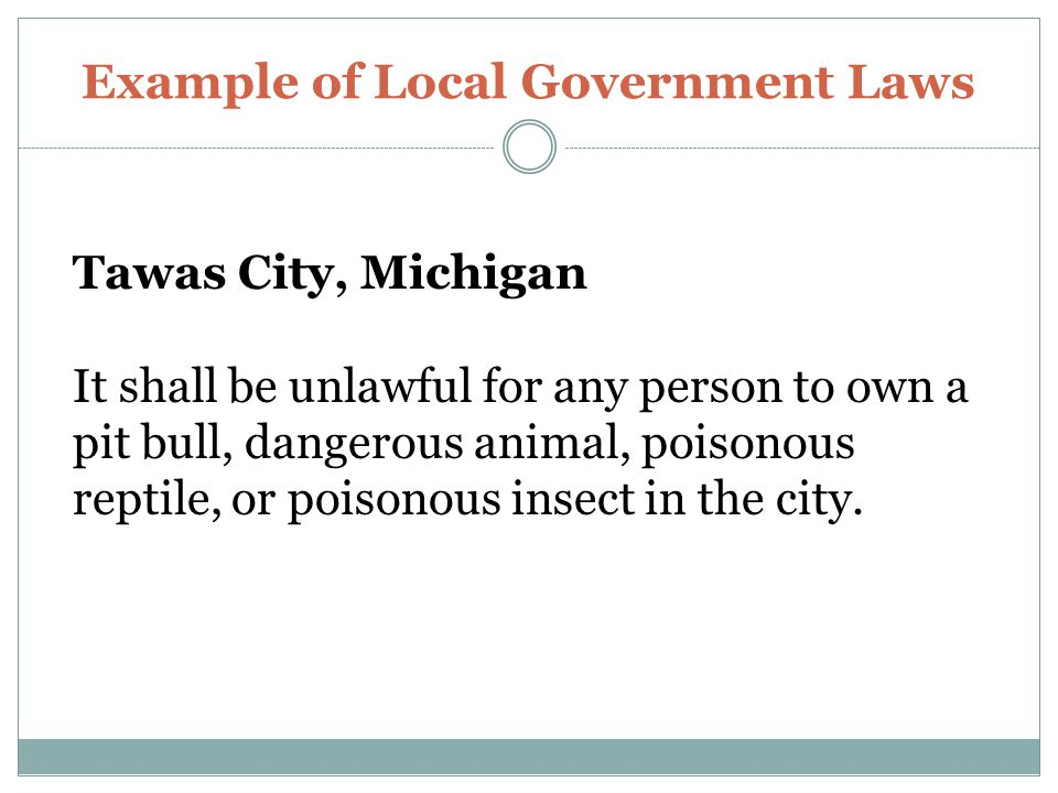 Example of Local Government Laws Tawas City, Michigan It shall be unlawful for any person to own a pit bull, dangerous animal, poisonous reptile, or poisonous insect in the city.