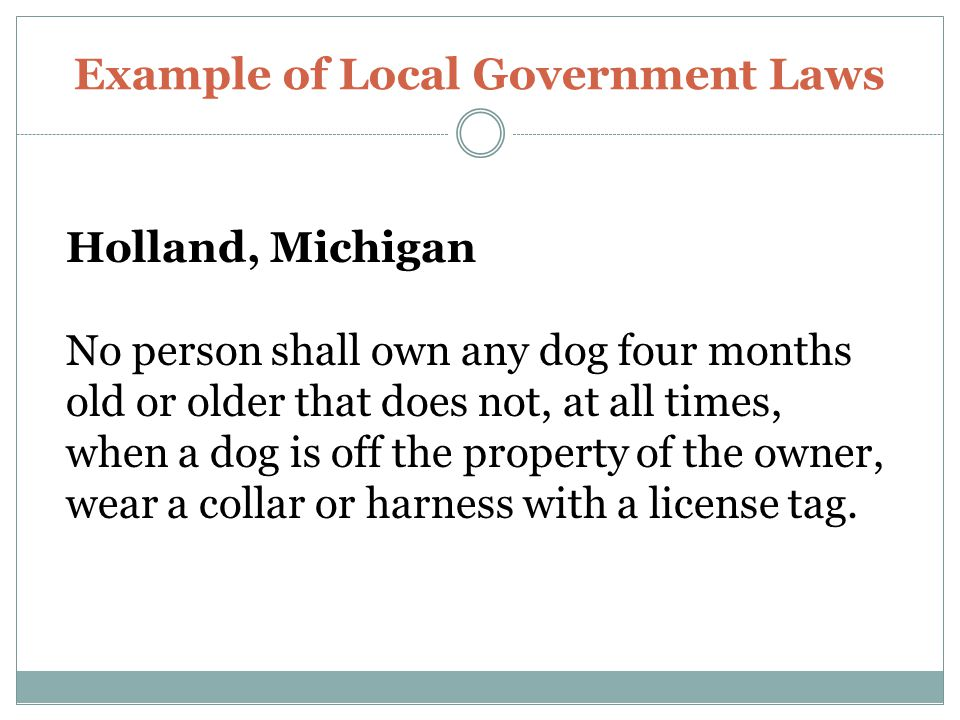 Example of Local Government Laws Holland, Michigan No person shall own any dog four months old or older that does not, at all times, when a dog is off the property of the owner, wear a collar or harness with a license tag.
