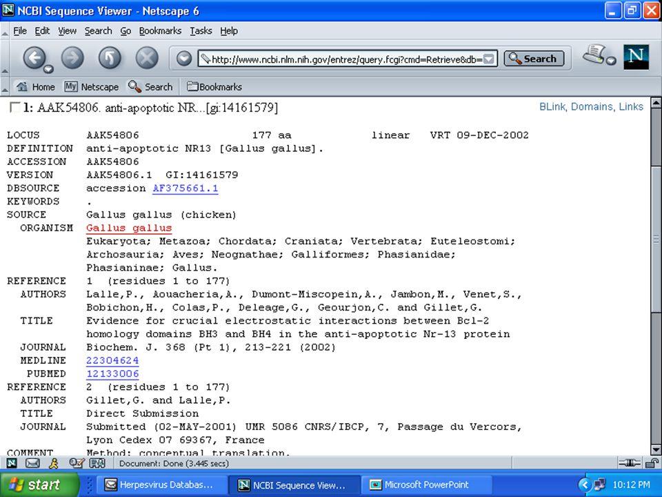 ANSC644 Bioinformatics-Database Mining 40