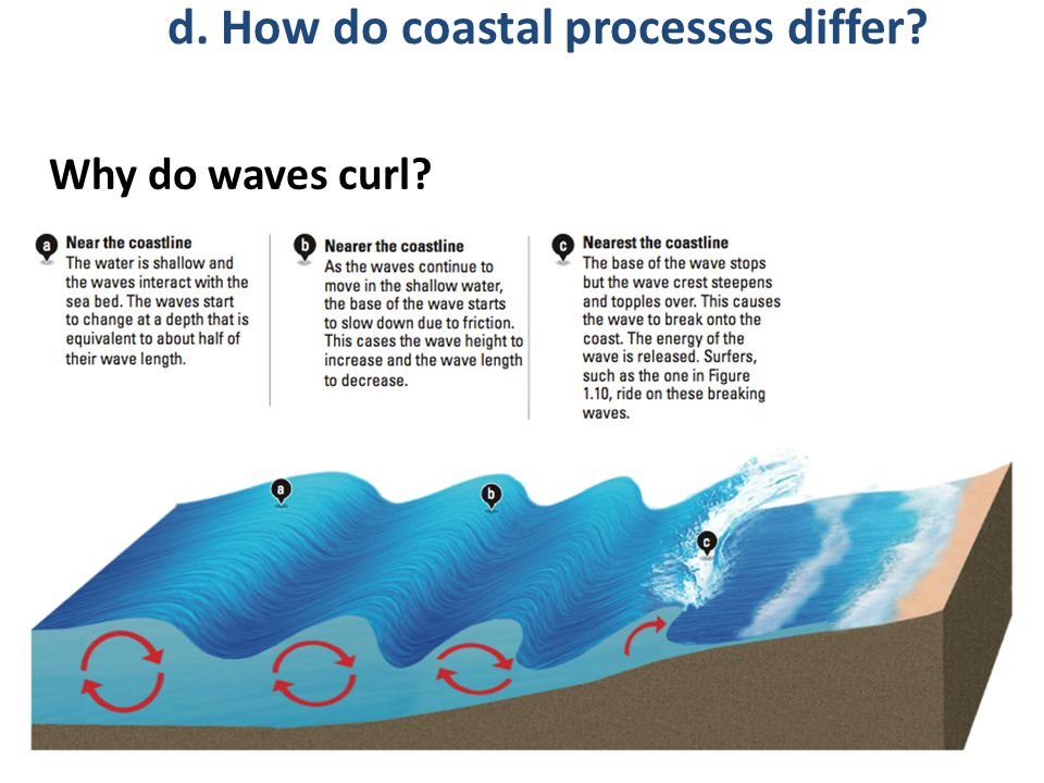 Why do waves curl? d. How do coastal processes differ?
