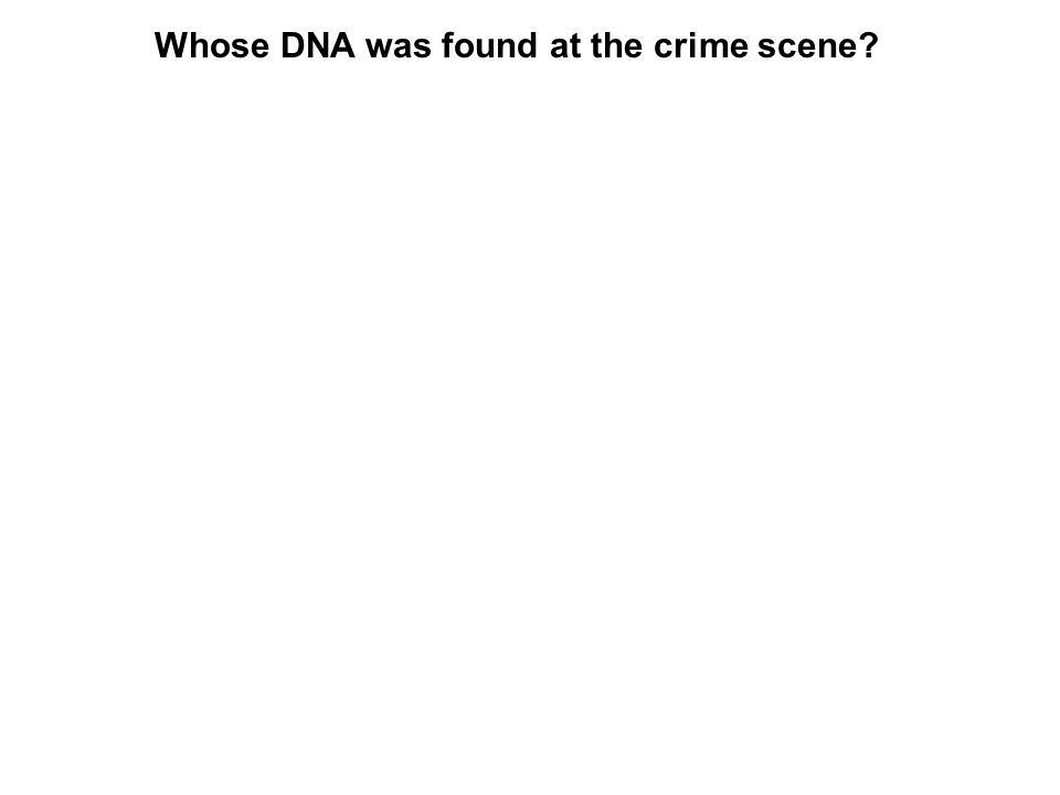 Whose DNA was found at the crime scene?