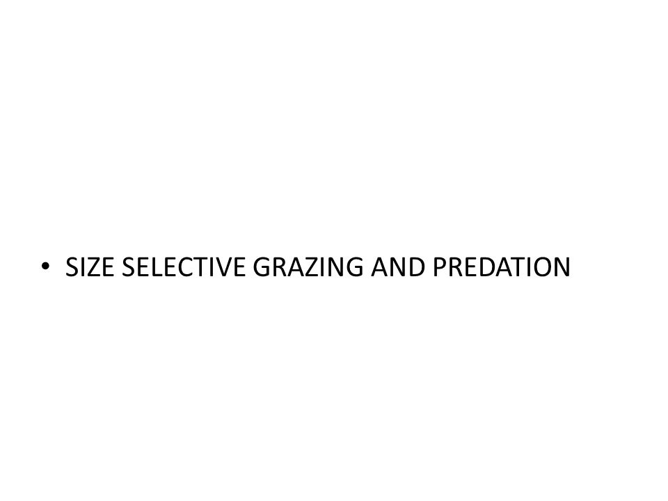 SIZE SELECTIVE GRAZING AND PREDATION