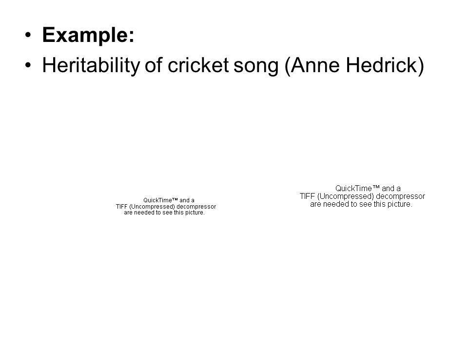 Example: Heritability of cricket song (Anne Hedrick)