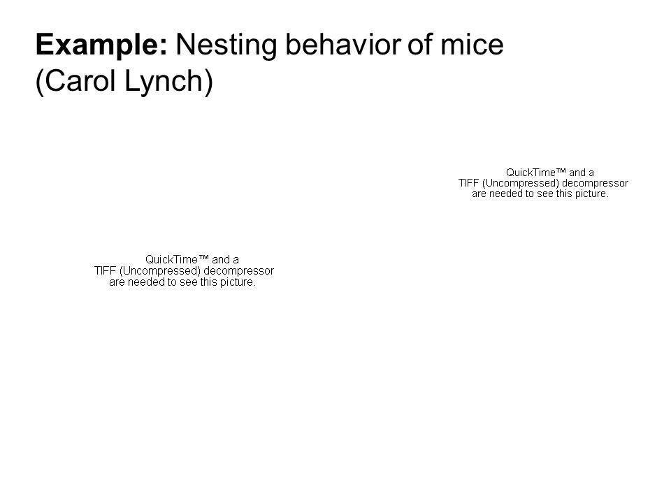 Example: Nesting behavior of mice (Carol Lynch)