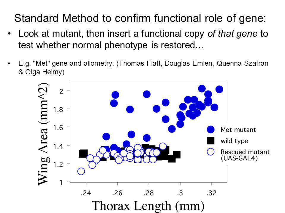 Standard Method to confirm functional role of gene: E.g.