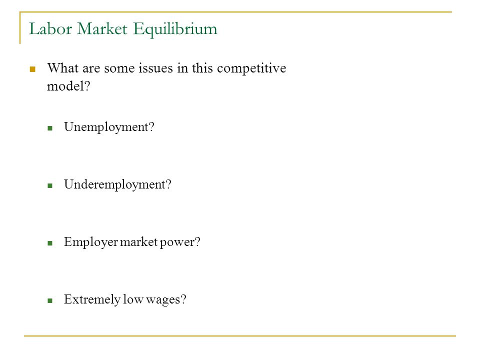 Labor Market Equilibrium What are some issues in this competitive model.