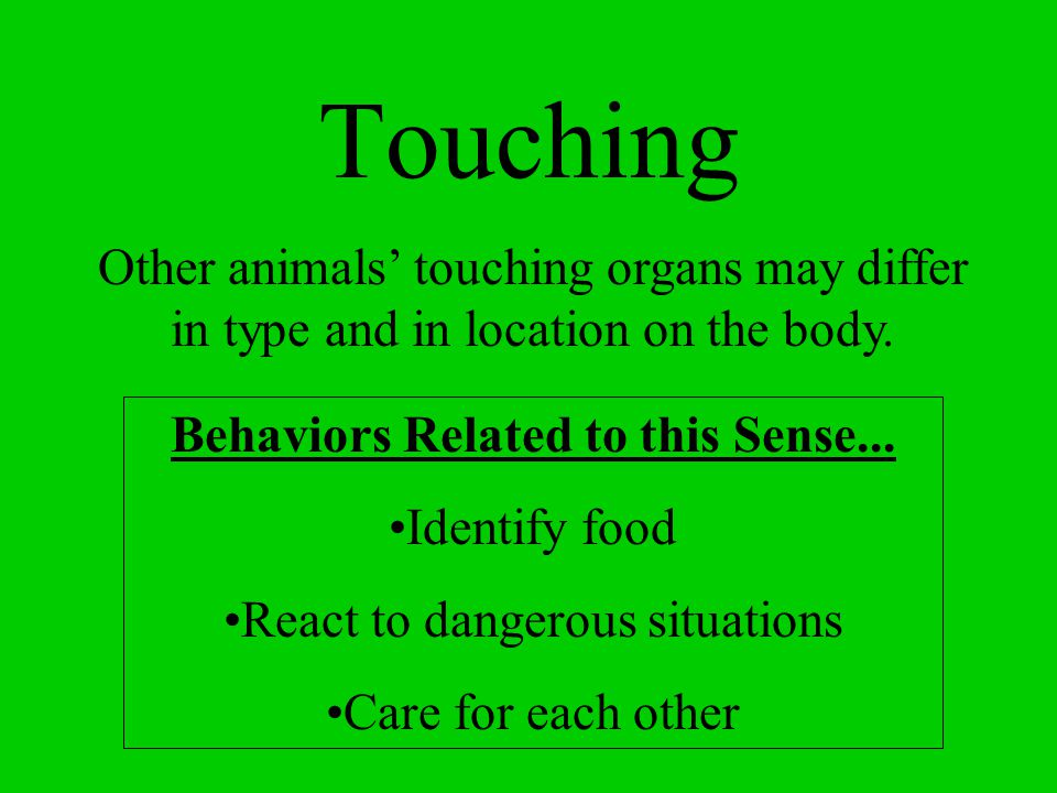 Touching Accomplished using the skin The skin can detect 5 different types of sensations: –touch –pressure –cold –pain –heat