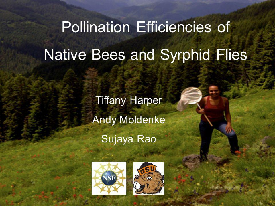 Pollination Efficiencies of Native Bees and Syrphid Flies Tiffany Harper Andy Moldenke Sujaya Rao