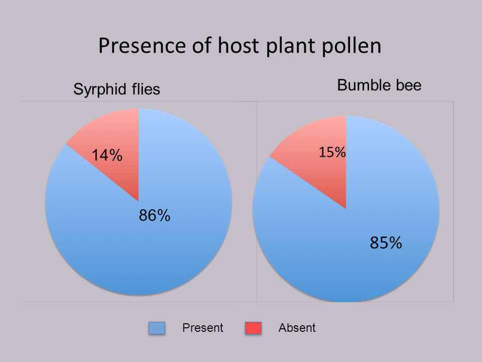 Presence of host plant pollen Bumble bee Syrphid flies PresentAbsent