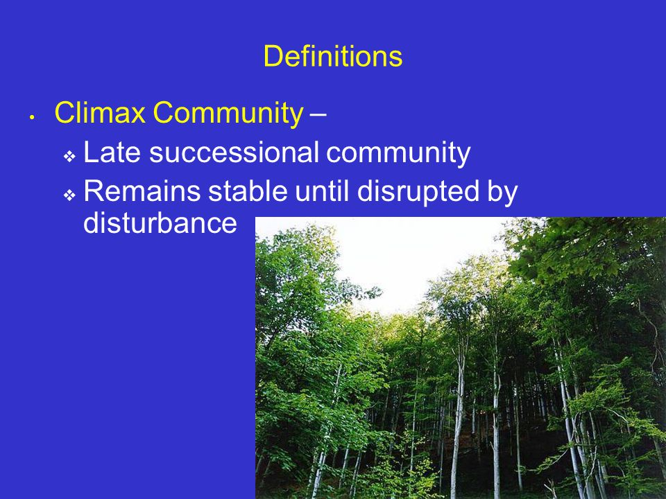 Molles: Ecology 2 nd Ed. Definitions Climax Community –  Late successional community  Remains stable until disrupted by disturbance