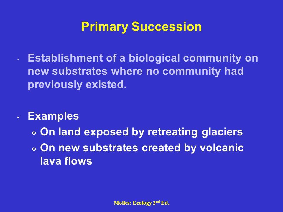 Molles: Ecology 2 nd Ed. Primary Succession Establishment of a biological community on new substrates where no community had previously existed. Examp