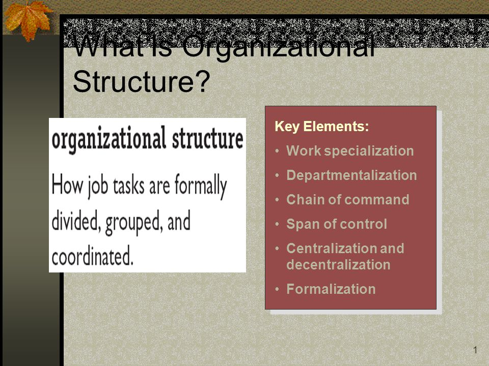 1 What Is Organizational Structure.