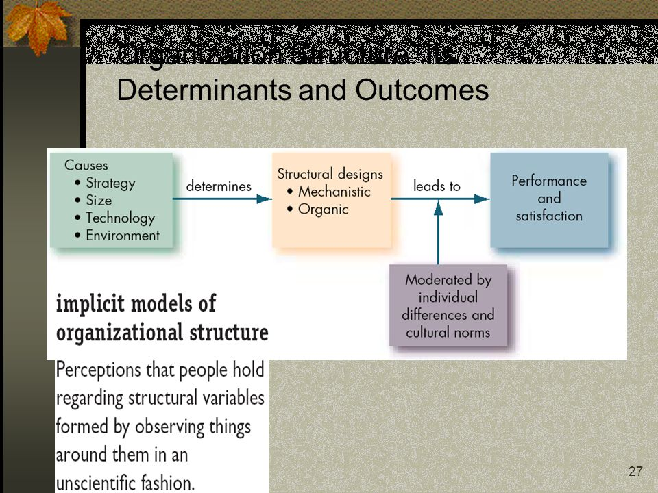 27 Organization Structure: Its Determinants and Outcomes