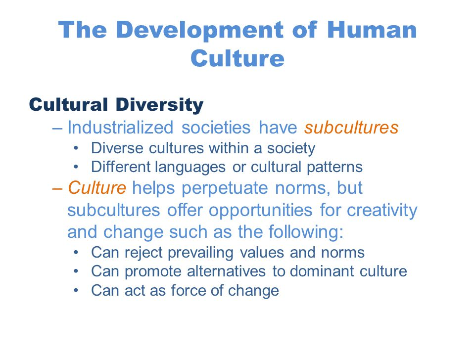 The Development of Human Culture Cultural Diversity –Industrialized societies have subcultures Diverse cultures within a society Different languages o