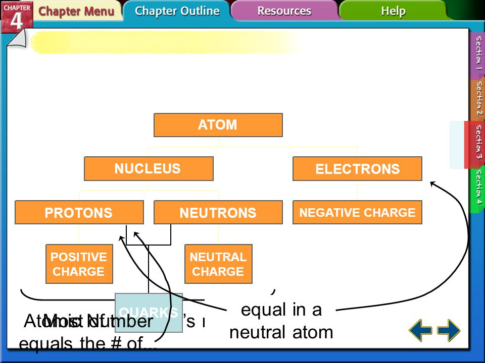 Section 4.3 Subatomic Particles Most of the atom's mass.