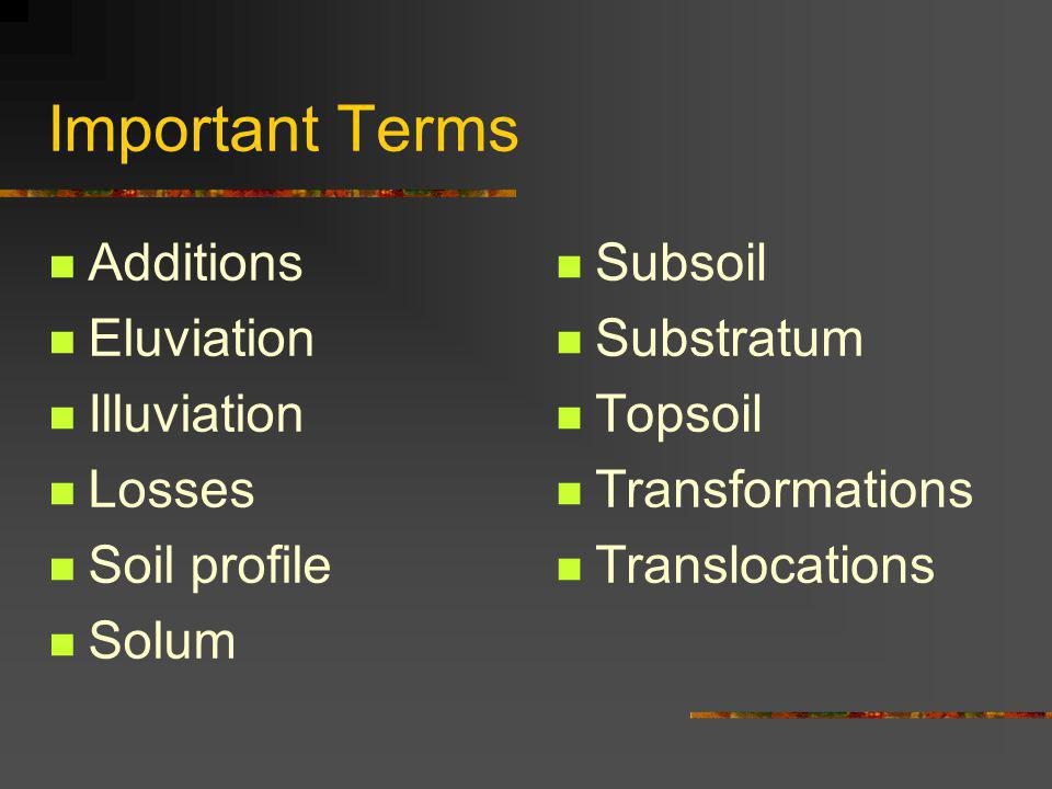 Important Terms Additions Eluviation Illuviation Losses Soil profile Solum Subsoil Substratum Topsoil Transformations Translocations
