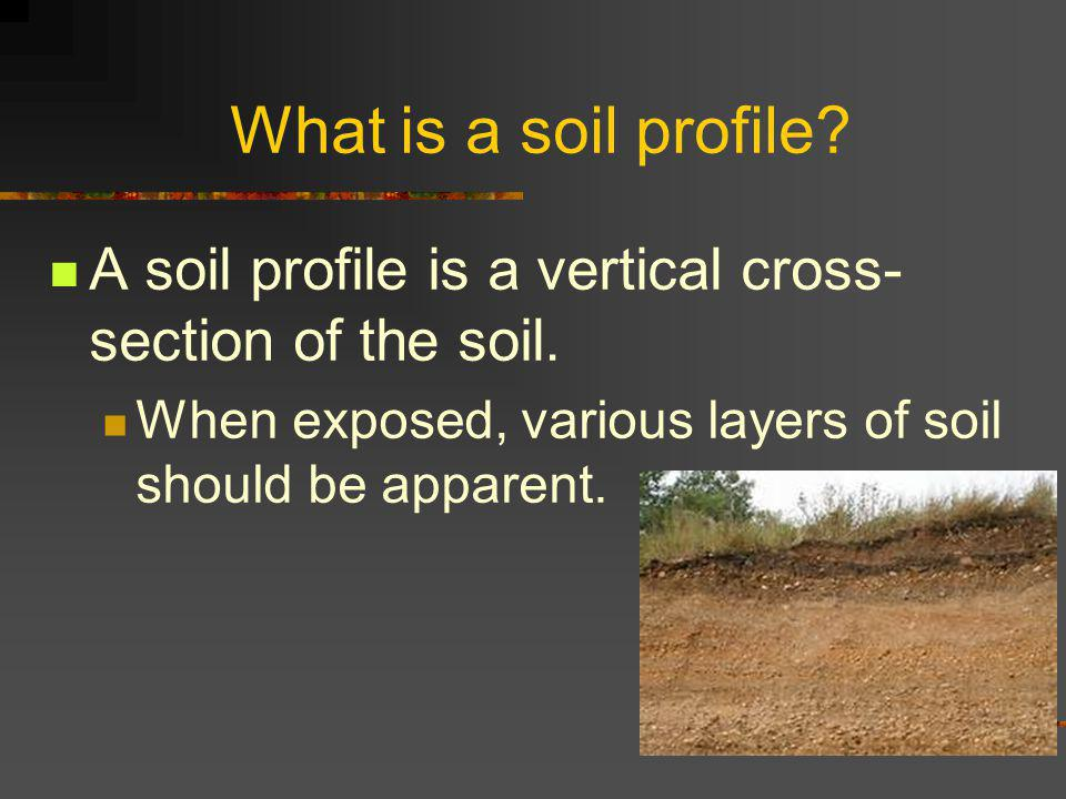 What is a soil profile. A soil profile is a vertical cross- section of the soil.