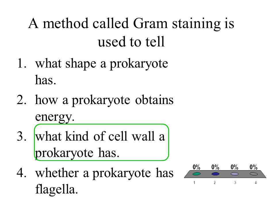 A method called Gram staining is used to tell 1.what shape a prokaryote has. 2.how a prokaryote obtains energy. 3.what kind of cell wall a prokaryote