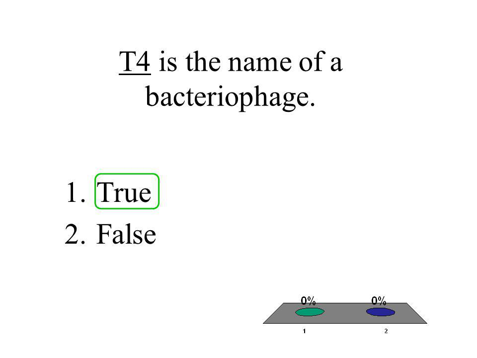 T4 is the name of a bacteriophage. 1.True 2.False