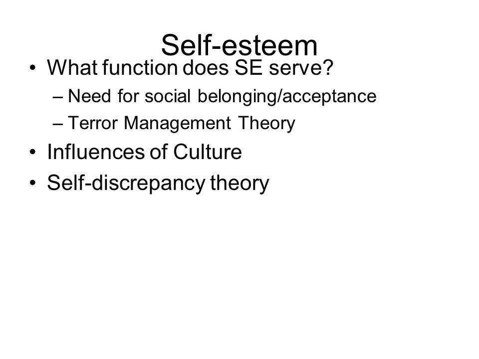 Self-esteem What function does SE serve.