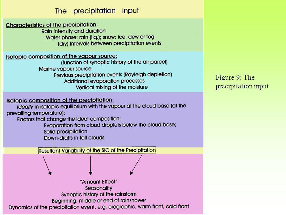 Figure 9: The precipitation input