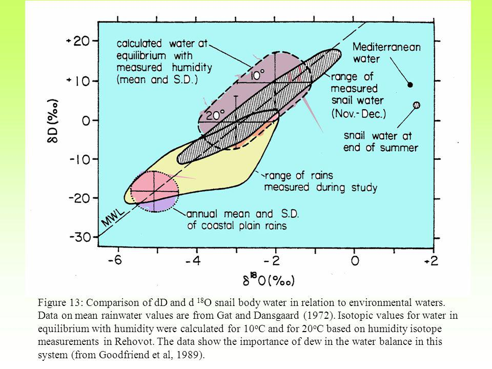 Figure 13: Comparison of dD and d 18 O snail body water in relation to environmental waters.
