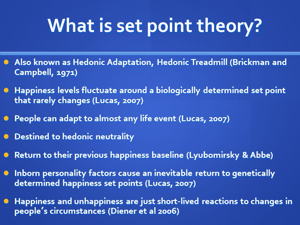 What is set point theory.