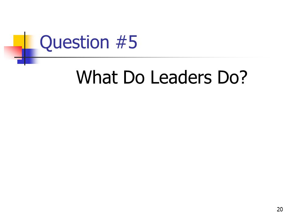 20 Question #5 What Do Leaders Do