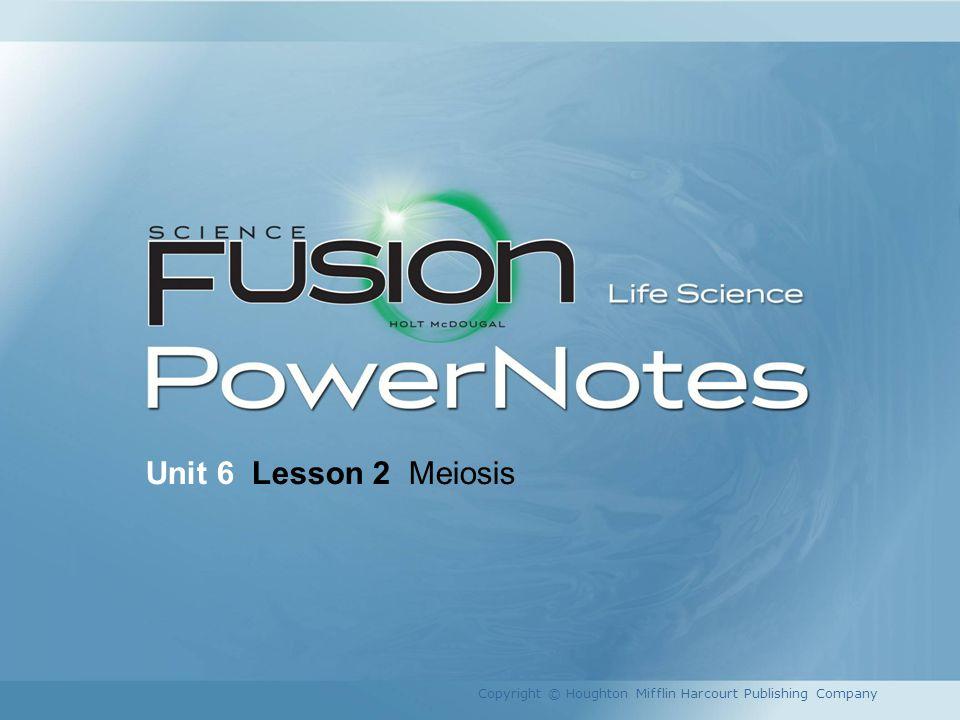Unit 6 Lesson 2 Meiosis Copyright © Houghton Mifflin Harcourt Publishing Company
