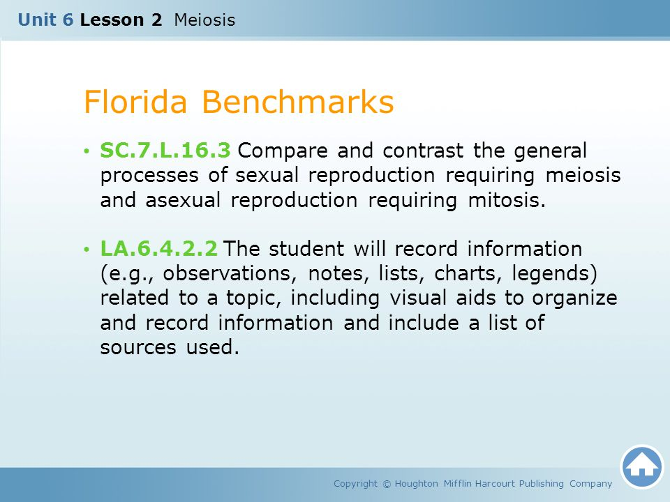 Unit 6 Lesson 2 Meiosis Florida Benchmarks Copyright © Houghton Mifflin Harcourt Publishing Company SC.7.L.16.3 Compare and contrast the general proce