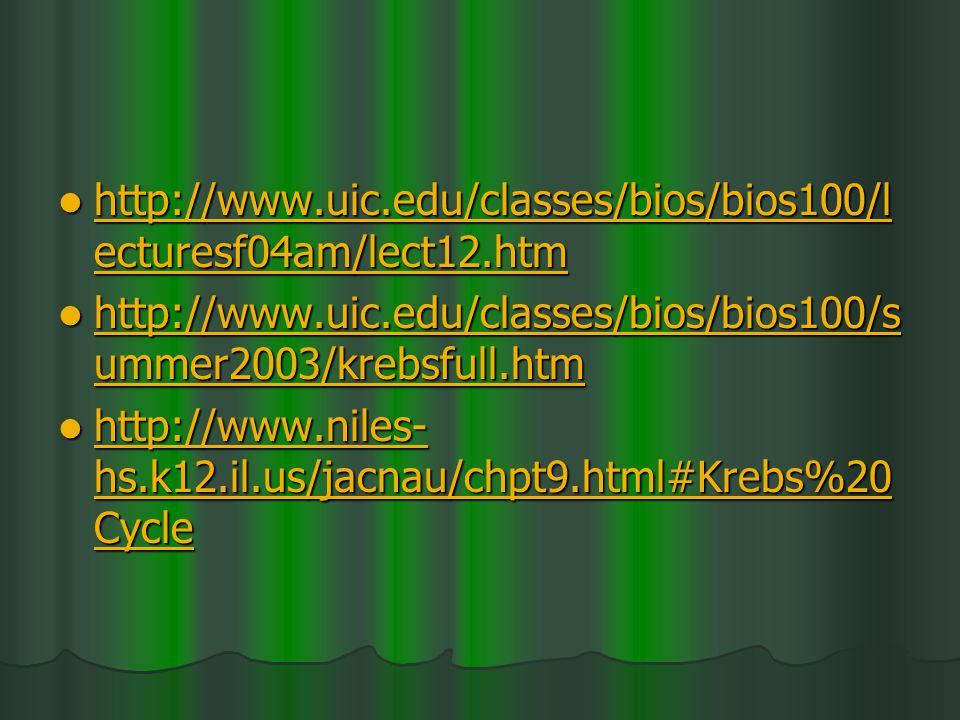 http://www.uic.edu/classes/bios/bios100/l ecturesf04am/lect12.htm http://www.uic.edu/classes/bios/bios100/l ecturesf04am/lect12.htm http://www.uic.edu/classes/bios/bios100/l ecturesf04am/lect12.htm http://www.uic.edu/classes/bios/bios100/l ecturesf04am/lect12.htm http://www.uic.edu/classes/bios/bios100/s ummer2003/krebsfull.htm http://www.uic.edu/classes/bios/bios100/s ummer2003/krebsfull.htm http://www.uic.edu/classes/bios/bios100/s ummer2003/krebsfull.htm http://www.uic.edu/classes/bios/bios100/s ummer2003/krebsfull.htm http://www.niles- hs.k12.il.us/jacnau/chpt9.html#Krebs%20 Cycle http://www.niles- hs.k12.il.us/jacnau/chpt9.html#Krebs%20 Cycle http://www.niles- hs.k12.il.us/jacnau/chpt9.html#Krebs%20 Cycle http://www.niles- hs.k12.il.us/jacnau/chpt9.html#Krebs%20 Cycle