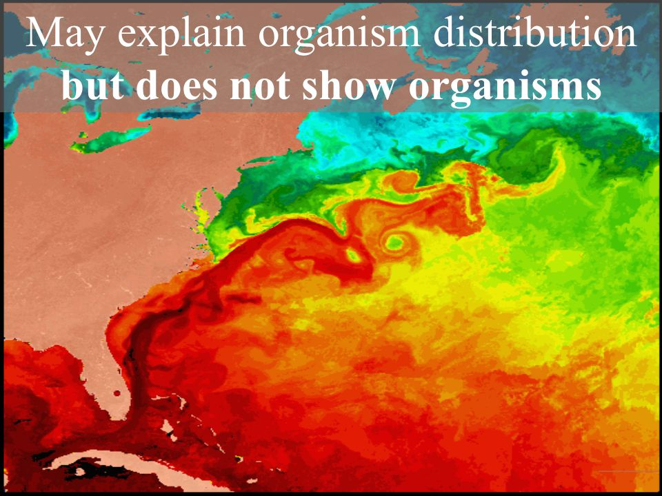 May explain organism distribution but does not show organisms