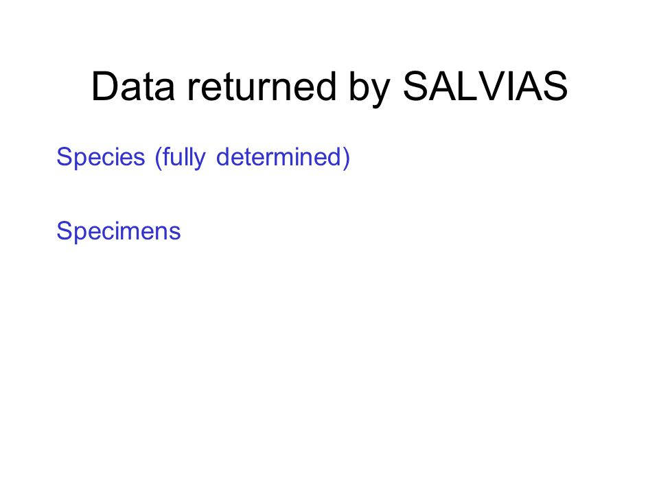 Data returned by SALVIAS Species (fully determined) Specimens