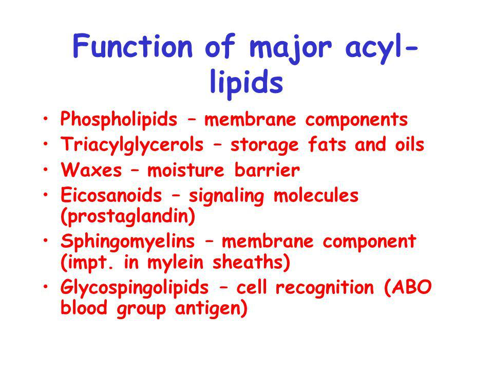 Function of major isoprenoid lipids Steroids (sterols) – membrane component, hormones Lipid Vitamins – Vitamin A, E, K Carotenoids - photosynthetic accessory pigments Chlorophyll – major light harvesting pigment Plastoquinone/ubiquinone – lipid soluble electron carriers Essential oils – menthol